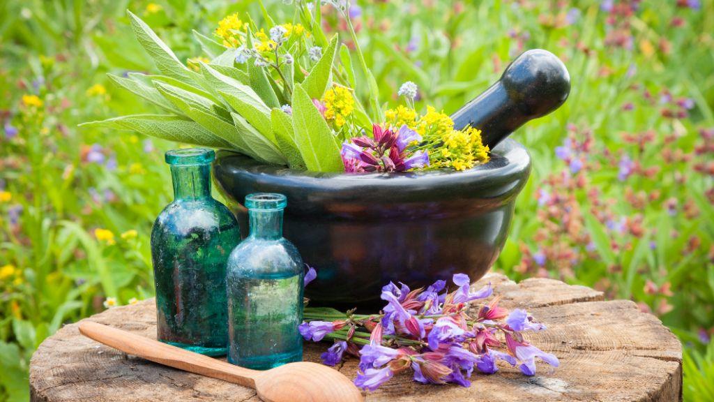 Naturopatia: cos'è e come può aiutarci